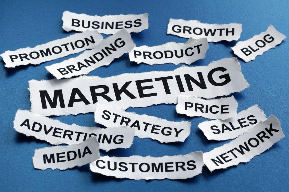 ramas de la psicologia blog neurita marketing