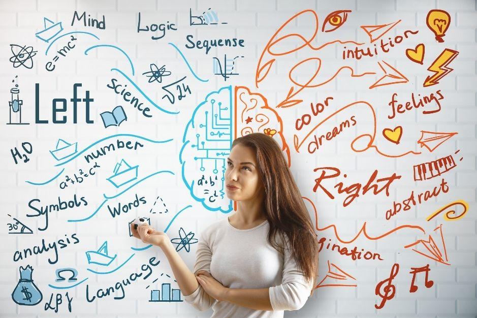 ramas de la psicologia blog neurita neuropsicologia