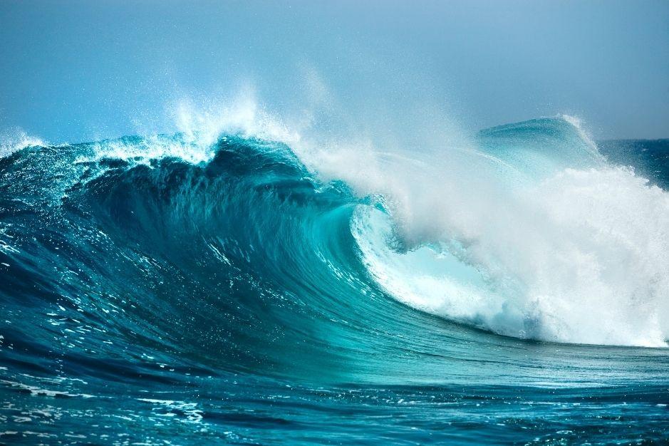 Talasofobia miedo al mar fobia especifica psicologia sintomas tratamiento blog de psicologia neurita